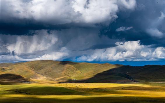 壁紙 川西、草地、山、雲、影、中国