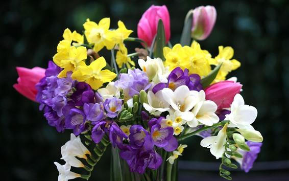 壁紙 色とりどりの花、花束、チューリップ、水仙、フリージア