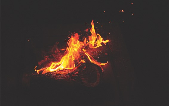 Fondos de pantalla Fuego, llama, leña, chispas, oscuridad.