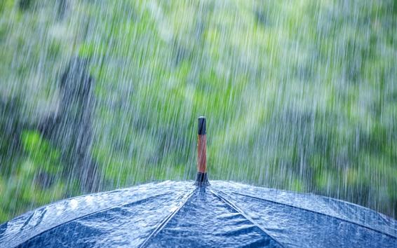 Fondos de pantalla Lluvia intensa paraguas