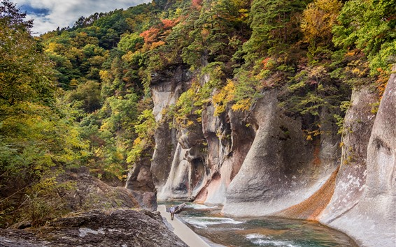 Wallpaper Japan, Gunma, rocks, canyon, river, trees, autumn