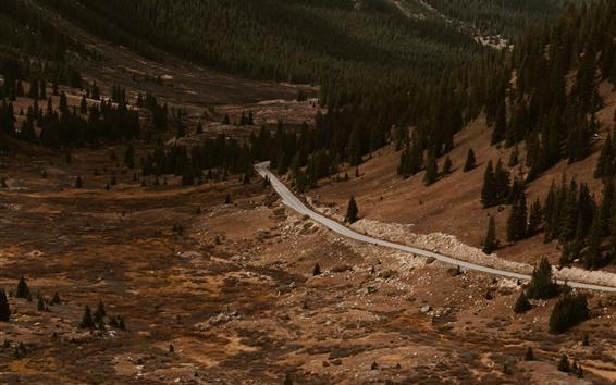 Fondos de pantalla Montaña, bosque, camino, paisaje natural.