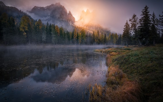 Papéis de Parede Montanhas, árvores, nevoeiro, amanhecer, rio, manhã
