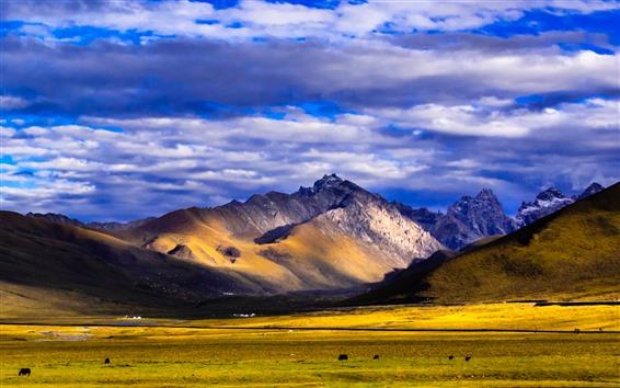Fondos de pantalla Nianbaoyuze, montañas, GRASSLAND, nubes, Qinghai, China
