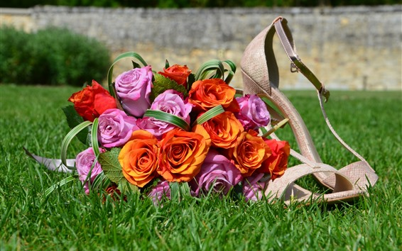 Wallpaper Pink and orange roses, shoes, grass