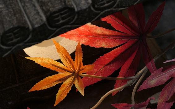 Wallpaper Plastic maple leaves