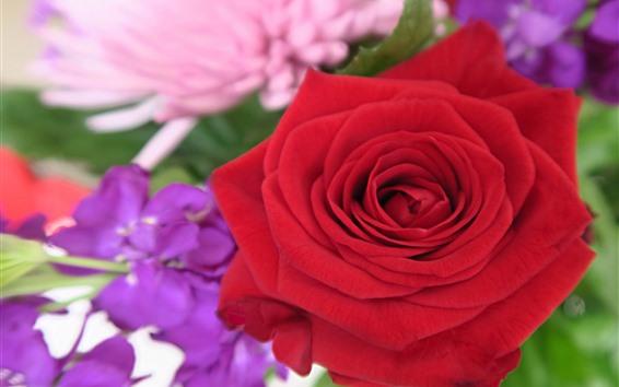 Papéis de Parede Rosa vermelha, pétalas, flores, nebulosas