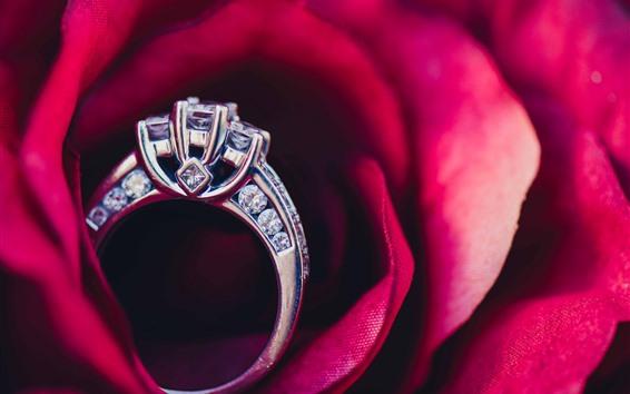 Wallpaper Red rose, petals, ring