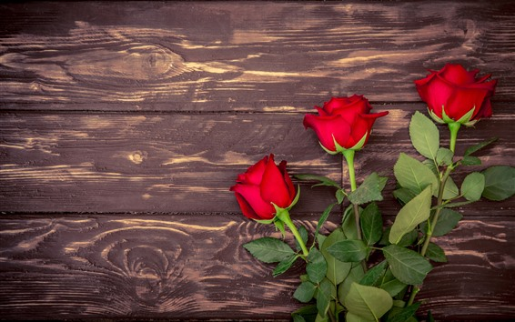 Fondos de pantalla Rosas rojas, fondo de tablero de madera