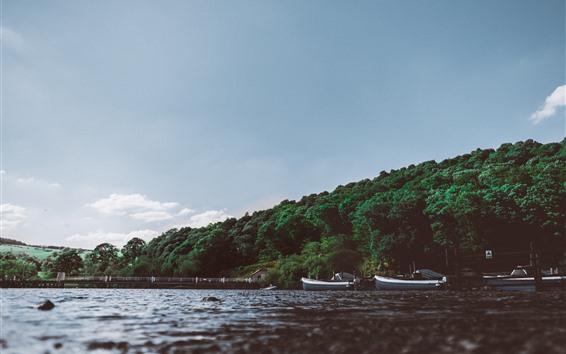 Fondos de pantalla Río, arboles, barcos, puente, cielo