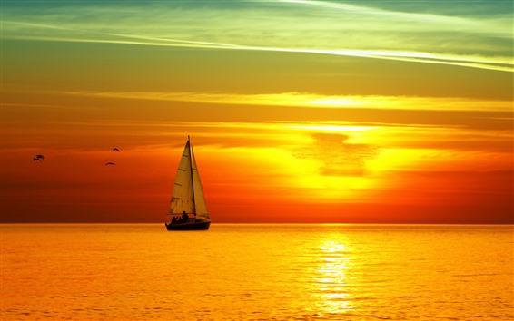 Papéis de Parede Mar, sailboat, pássaros, paisagem bonita do por do sol