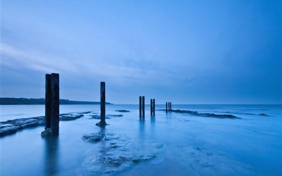 Wallpaper Sea, stumps, dusk