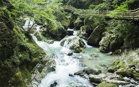 Papéis de Parede Shennongjia, guanmenshan, riacho, pedras, prancha, estrada, china