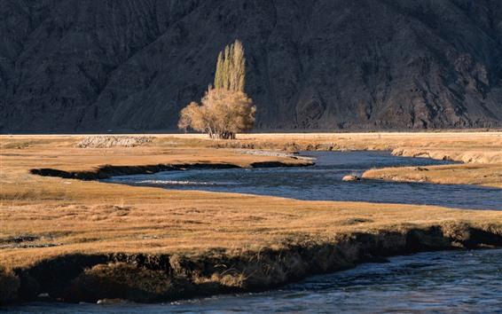 Fondos de pantalla Árbol, río, Pamirs