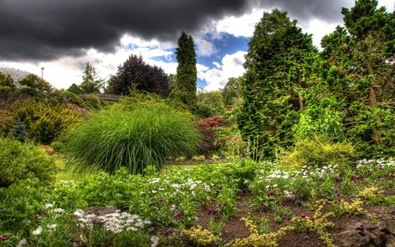 Fondos de pantalla Árboles, puente, flores silvestres, verde, primavera.