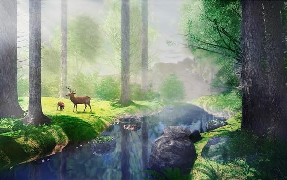 Fond d'écran Arbres, herbe, rivière, cerf, brouillard, rayons de soleil