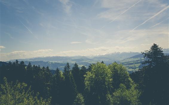 壁紙 木、山、雲、空、自然の風景