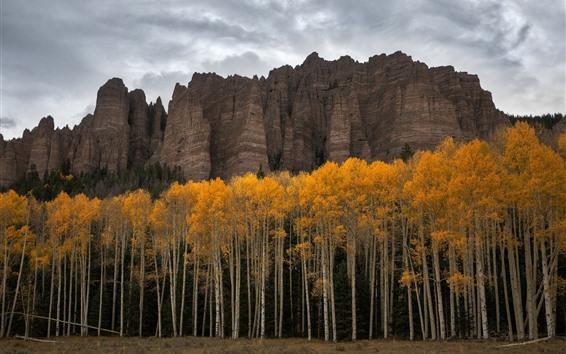 Fondos de pantalla Los E.E.U.U., Colorado, árboles, acantilado, otoño