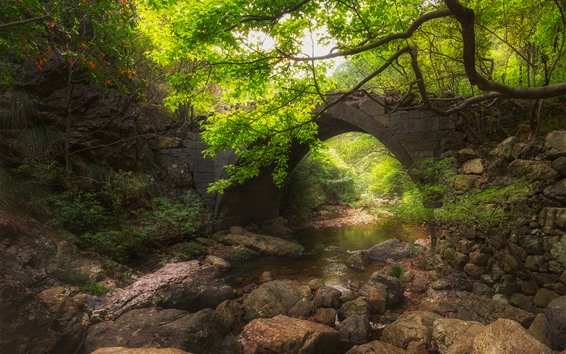 Fondos de pantalla Aldea, puente, rocas, arroyo, árboles, verde