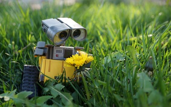 Papéis de Parede Wall-E, robô, flor amarela