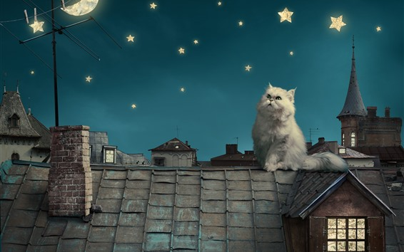 Wallpaper White cat, roof, moon, stars, creative picture