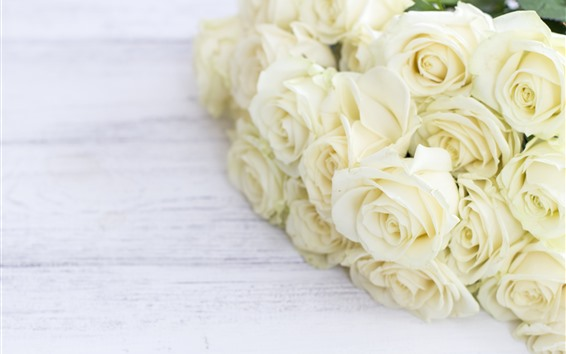 Wallpaper White roses, bouquet, flowers