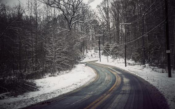 Fondos de pantalla Invierno, carretera, árboles, nieve, líneas eléctricas