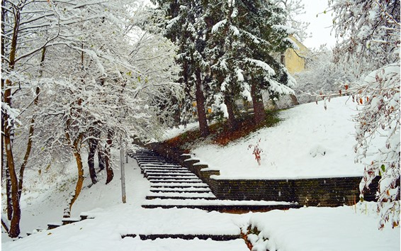 Papéis de Parede Inverno, neve, árvores, escadas