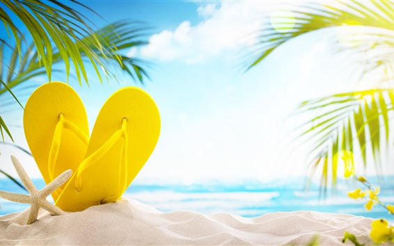 Wallpaper Beach, sands, yellow slippers, palm leaves, glare
