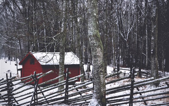 Wallpaper Forest, trees, hut, snow, winter