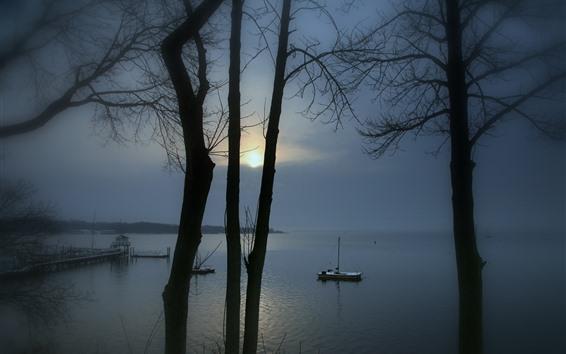 壁纸 湖,码头,树木,日出,雾,早晨