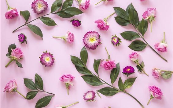 Papéis de Parede Flores cor de rosa, rosas, folhas verdes, fundo rosa
