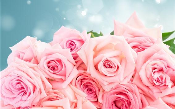 Papéis de Parede Rosas cor de rosa, buquê, brilho, romântico