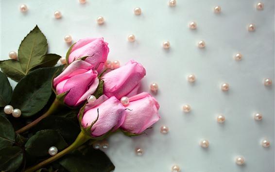 Papéis de Parede Rosas cor de rosa, gotas de água, miçangas