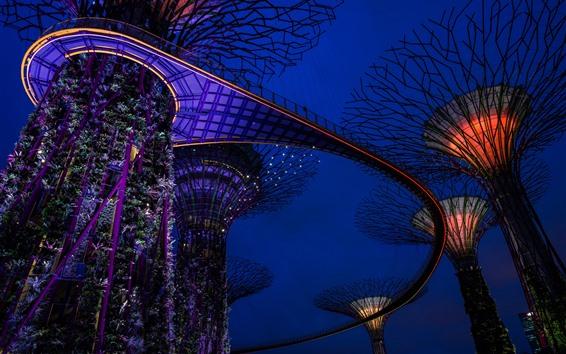 배경 화면 싱가포르, 밤, 정원, 조명