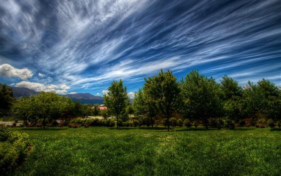 Papéis de Parede Árvores, grama, casas, céu azul, nuvens