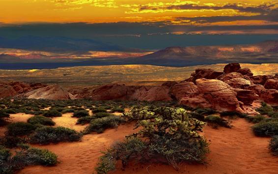 배경 화면 미국, 네바다, 사막, 열