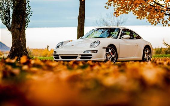 Fond d'écran Voiture Porsche 911 blanche, feuilles d'automne