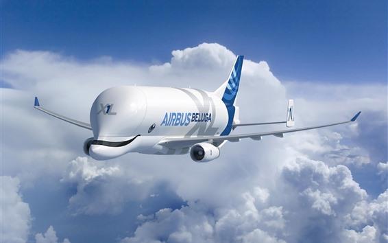 Wallpaper Airbus Beluga, A300-600ST Super Transporter