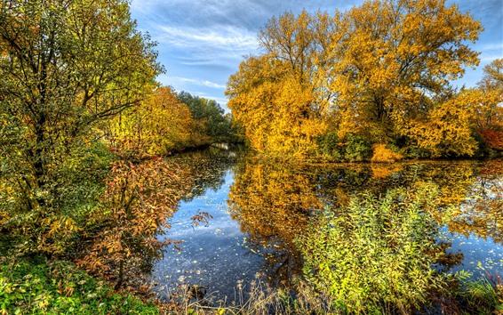 Papéis de Parede Outono bonito, árvores douradas, lagoa