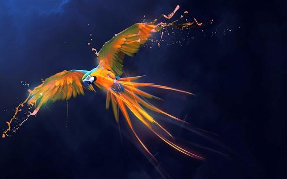 Обои Красивый попугай, краска, крылья, полет, Художественная фотография, творческий