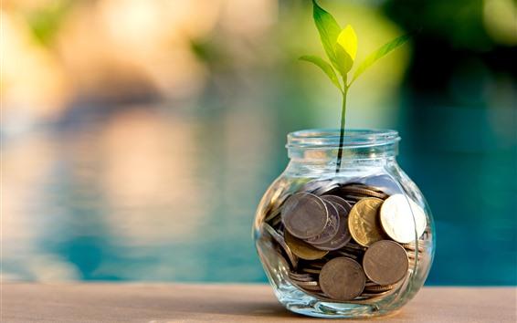 壁紙 コイン、銀行、植物、緑の葉