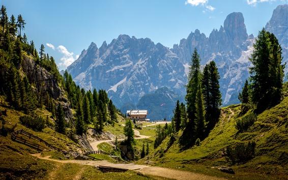Fond d'écran Dolomites, Italie, Alpes, camp, arbres