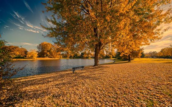 Wallpaper Golden autumn, trees, leaves, bench, park, lake