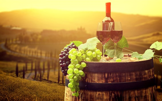 Обои Виноград, вино, бутылка, рассвет, дымка, солнце