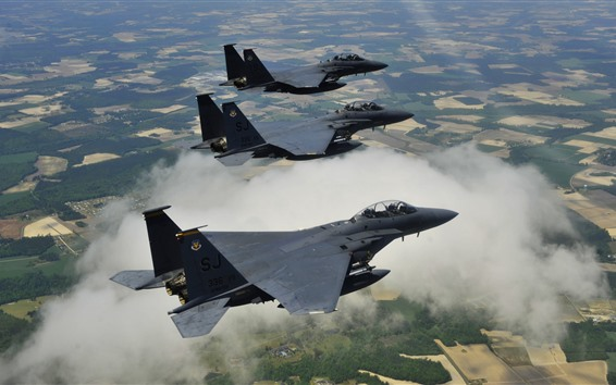 Wallpaper McDonnell Douglas F-15E fighters flight, height