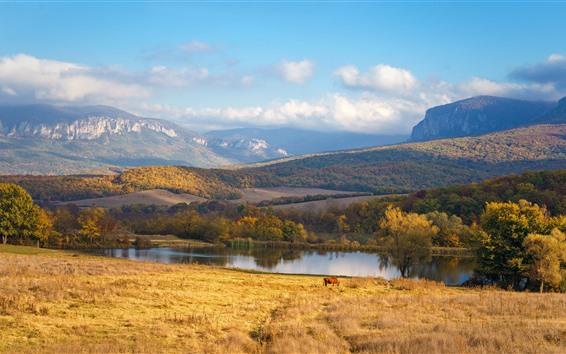 Papéis de Parede Montanhas, Rio, árvores, grama, nuvens, vaca, outono