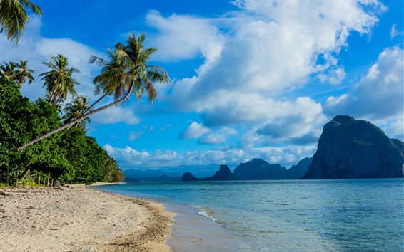 Wallpaper Philippines, beach, palm trees, mountains, sea