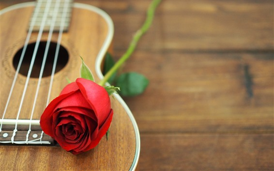 Wallpaper Red rose, guitar