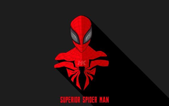Wallpaper Spider-man, DC comics hero